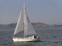 4.1453131263.dinner-cruise